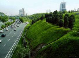 شهر سبز