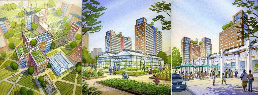 قوانین مهندسی شهرسازی برای ساخت و ساز